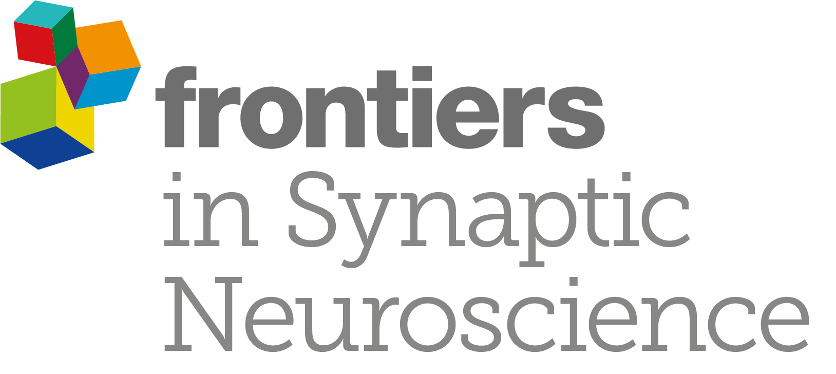 LOGO_Synaptic Neuroscience_Grey (1)