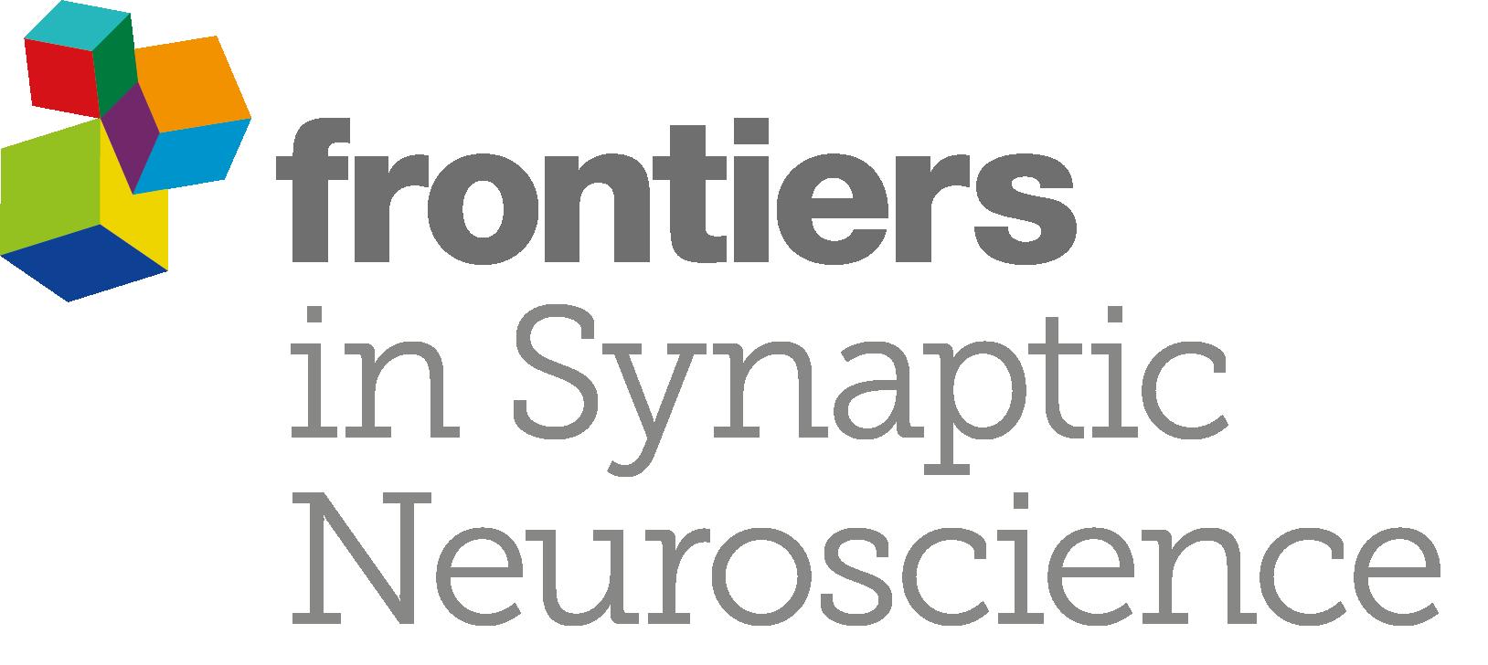 LOGO_Synaptic Neuroscience_Grey (1)
